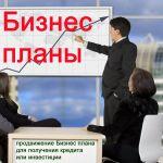 Бизнес-план и содействие в положительном рассмотрении