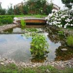 Строительство прудов и водоемов на участках. Ремонт. ЗвонитЕ.