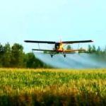 Обработка кукурузы от вредителей авиацией