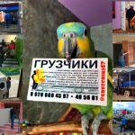 Услуги грузчиков, автотранспорта