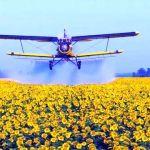 Авіапослуги з внесення фунгіцидів на соняшник